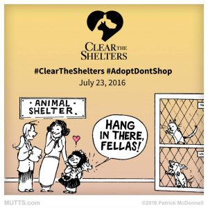 Clear the Shelters 2016 graphic
