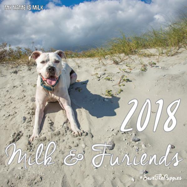 2018 dog calendar cover