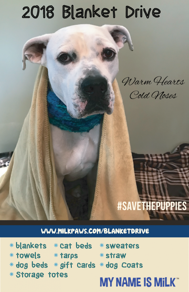 Blanket Drive for shelter animals 2018