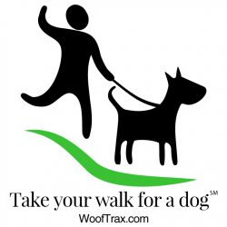 Walk for a Dog!
