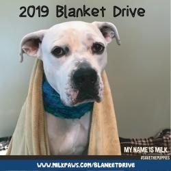 Blanket Drive 2019